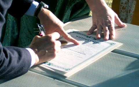 The Importance of Proofreading Your Business Contracts