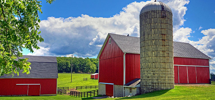 What Is a Commercial Farm Under the New Jersey Right to Farm Act?