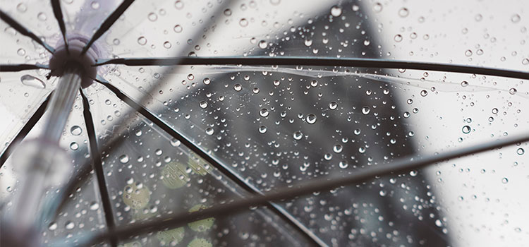 Will Your New Jersey Business Soon Be Charged a Rain Tax?
