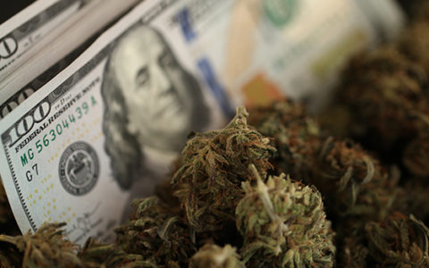 Will Calls for Cannabis Banking Clarity Lead to Results?