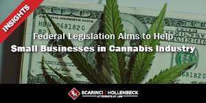 Federal Legislation Aims to Help Small Businesses in Cannabis Industry