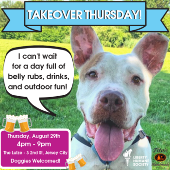 Liberty Humane Society Titos Takeover Yappy Hour
