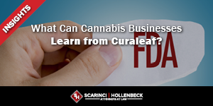What Can Cannabis Businesses Learn from Curaleaf?