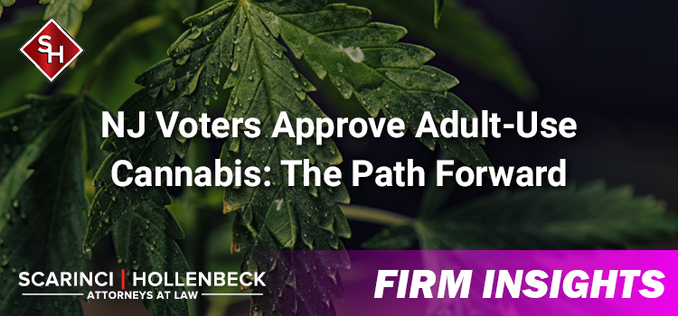 NJ Voters Approve Adult-Use Cannabis: The Path Forward