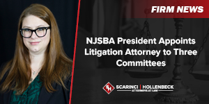 NJSBA President Appoints Litigation Attorney to Three Committees